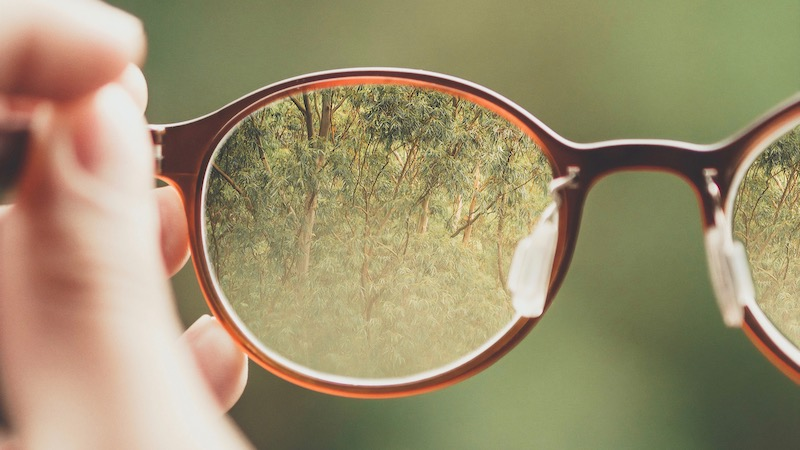 Eye glasses looking at trees
